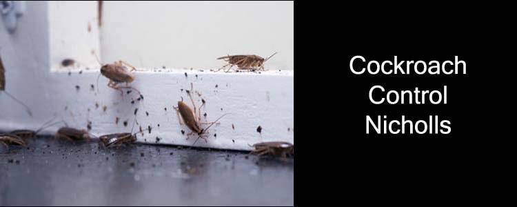 Cockroach Control Nicholls
